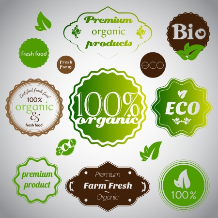 Set of organic and farm fresh food Stock Vector - 17547796