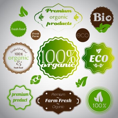 Set of organic and farm fresh food Stock Vector - 17547796
