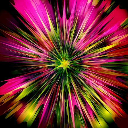 Explosion   Flower design Vector