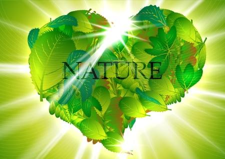 Green heart-leaves Stock Vector - 17618309