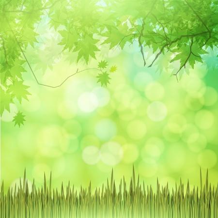 Eco nature vector Illustration