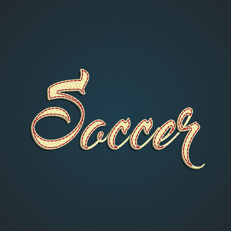 Soccer label made by leather, vector illustration