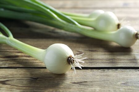 young fresh green onions. on a wooden background