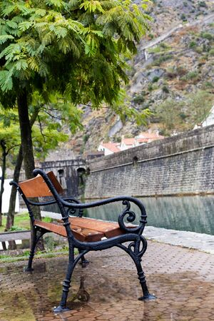 kotor: Black shop in drops, standing in a puddle. Small tree and wall of the fortress is not in focus.