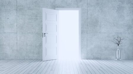 Light entering from white wooden open door to empty room with concrete wall and white wooden parquet floor realistic 3D rendering  Reklamní fotografie