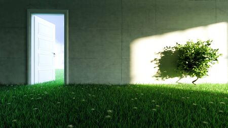 concrete wall with grass and flower floor in empty room and sunlight shadow effect on wall realistic 3D rendering