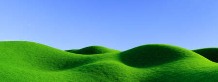 Roughness hills landscape with green grass and white flowers background 3D rendering