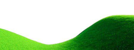 Hills landscape with green grass and white flowers background 3D rendering