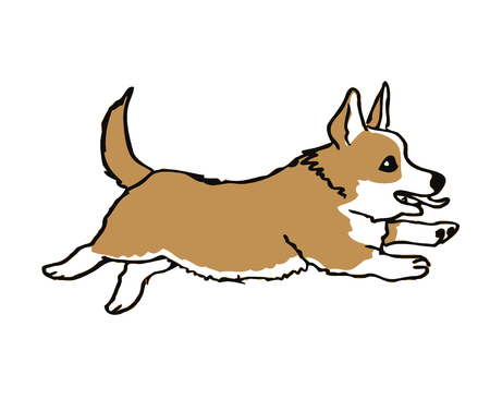 Hand drawn welsh corgi Pembroke funny dog on white ink drawn funny dog graphic dog sketches art welsh corgi Pembroke smiling dog