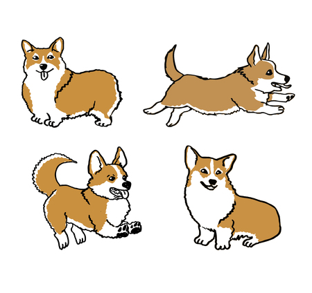 domestic: Hand drawn welsh corgi pembroke funny dog on white ink drawn funny dog graphic dog sketches art welsh corgi pembroke smiling dog Illustration