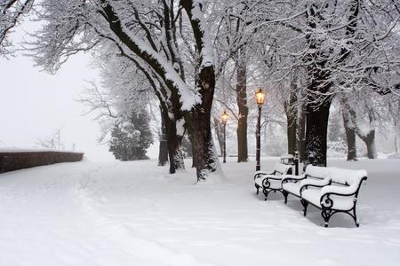 bratislava:  morning in winter park - bratislava