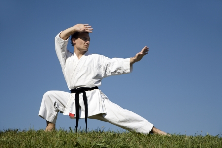 world champion - karate - kata - training  Stock Photo - 9696459