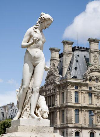 statuary garden: Paris - Venus Statue from Tuileries garden