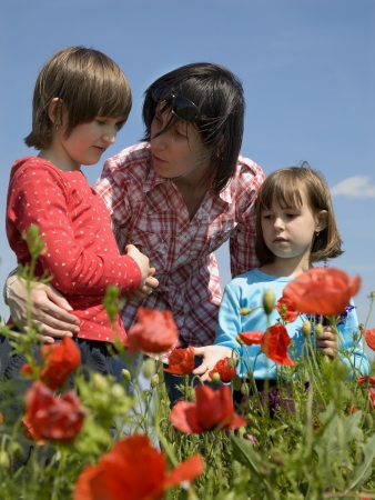 mother and children and the corm poppy  photo