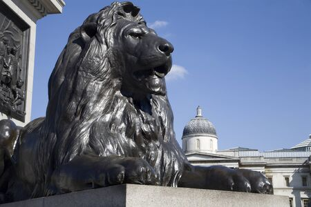 London - lion from Nelson memorial on Trafalgar square  Stock Photo - 15621910