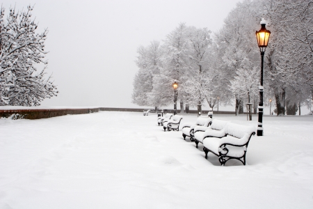 berm: Bratislava - winter mornign in  park