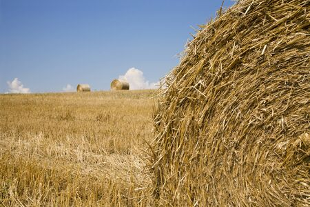 acre:  bale of the straw on the acre