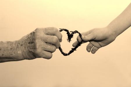 senescence:  hand of grandmother and grandchild  Stock Photo