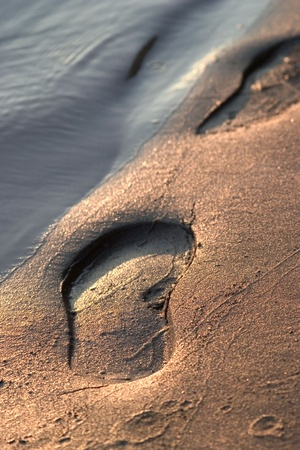 footstep: footstep  Stock Photo