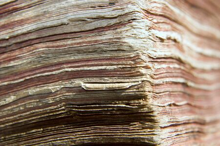 attrition: detail of old bible