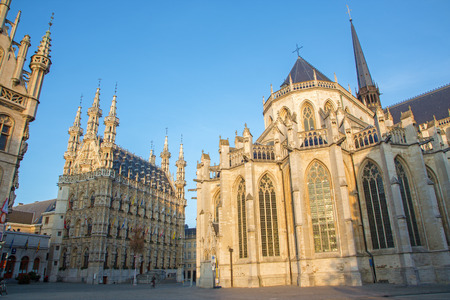 leuven: Leuven - Gothic town hall and st  Peters cathedral in morning light