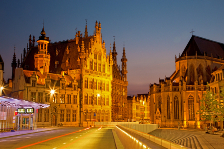 leuven: Leuven - Gothic town hall and st. Peters cathedral from Margarethaplein in morning dusk