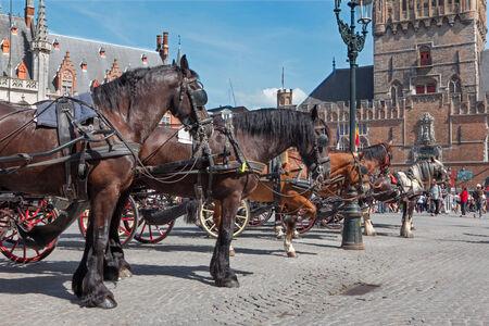 belfort: BRUGES, BELGIUM - JUNE 12, 2014: The Carriage on the Grote Markt and Belfort van Brugge in background.