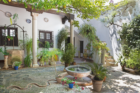 CORDOBA, SPAIN - MAY 26, 2015: The treditonal green yard (pacio) of house Casa de los Luna on the Plaza de San Andres square erected in year 1544.