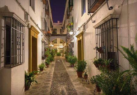city by night: Cordoba - The beautiful decorated aisle in the centre of old town at night