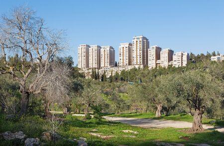 residencial: Jerusalem - Emek HaMatsleva - Rehavia Park and modern residencial buildings. Stock Photo