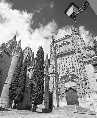 vieja: SALAMANCA, SPAIN, APRIL - 17, 2016: The south gothic portal of Catedral Vieja - Old Cathedral.