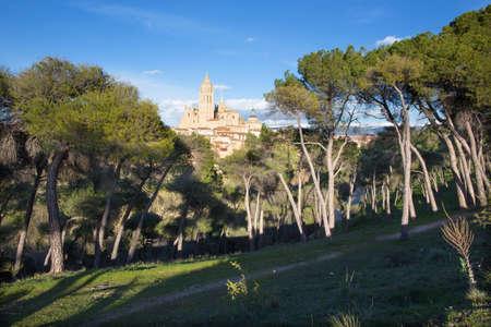 segovia: Segovia - Cathedral Nuestra Senora de la Asuncion y de San Frutos de Segovia