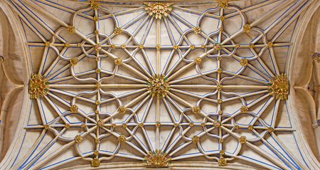 SALAMANCA, SPAIN, APRIL - 16, 2016: The gothic vault of side nave in New Cathedral (Catedral Nueva).