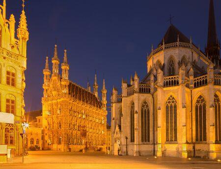 Leuven - Gotisch stadhuis en st. Peters kathedraal in avondschemer Stockfoto