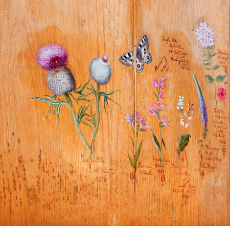 SAINT ANTON, SLOVAKIA - FEBRUARY 26, 2014: Drawings of flowers and plants by Bulgarian tsar Ferdinand Coburg from table of Library in your residence - palace Saint Anton. Tsar was inflamed botanist. Editorial