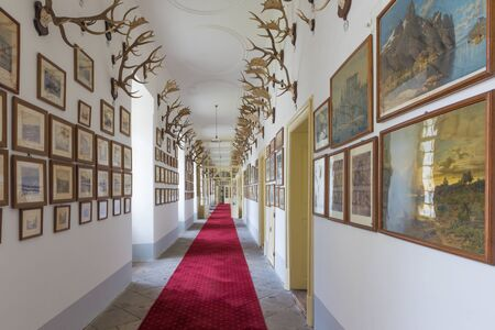 anton: SAINT ANTON, SLOVAKIA - FEBRUARY 26, 2014: Corridor with the lot of trophy in palace Saint Anton.