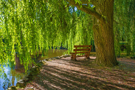 Topolcianky - The romantic corner with the willow and bench in park of palace in Topolcianky. Stok Fotoğraf - 83858340