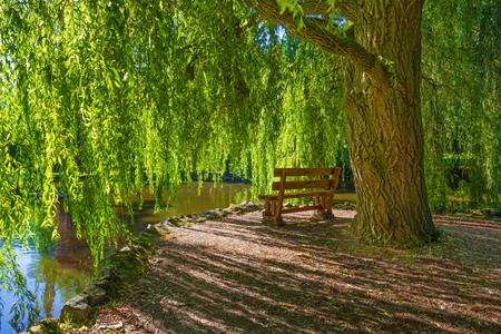 Topolcianky - Topolcianky의 궁전 공원에서 버드 나무와 벤치가있는 낭만적 인 코너. 스톡 콘텐츠