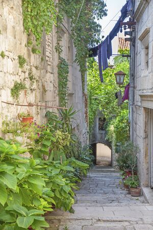 Korcula - The one ailse of the old town. Standard-Bild
