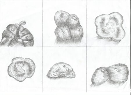 hand pencil: This is set of peppers, that draw with pencil.