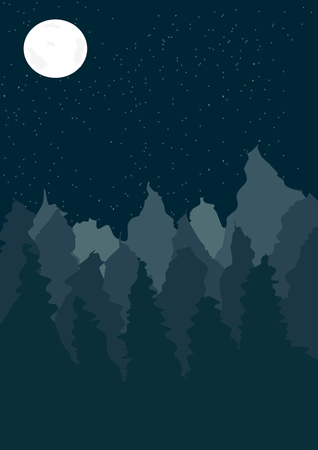 nigth: On this picture is landscape with coniferous forest at night. Illustration