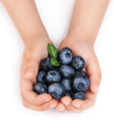 punhado: Girls hands holding ripe blueberries. Isolated on white background