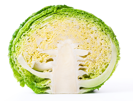 Savoy cabbage cross section isolated on white .