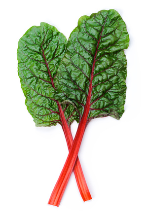 Two leaves of Mangold or Swiss chard  isolated on white Standard-Bild
