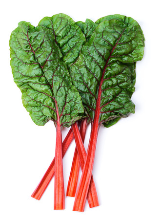 rhubarb: Mangold or Swiss chard leaves isolated on white