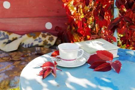 nostalgia: Mood - autumn. Fallen leaves. Comfort . Nostalgia