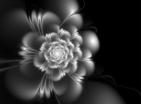 undulated: Abstract fractal black and white background with a picture of a flower