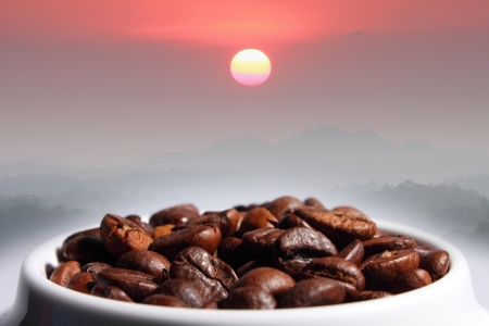 coffee beans mountain, sun and warm light photo