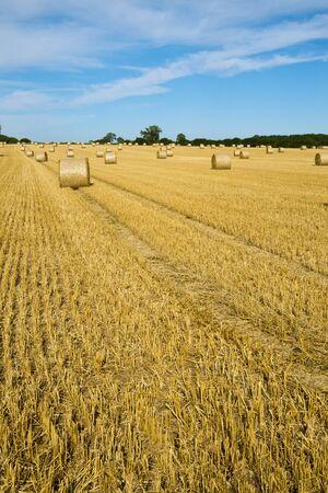 tetbury: Late summer harvest landscape near Tetbury, Gloucestershire, UK Stock Photo
