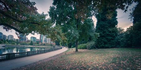 fall season park before sunset
